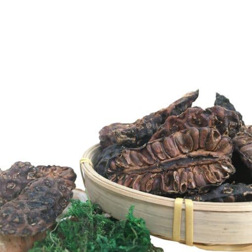[Mua 5 tặng 2] Combo 5kg trái nhàu/ quả nhàu khô loại chuyên dùng ngâm rượu 2