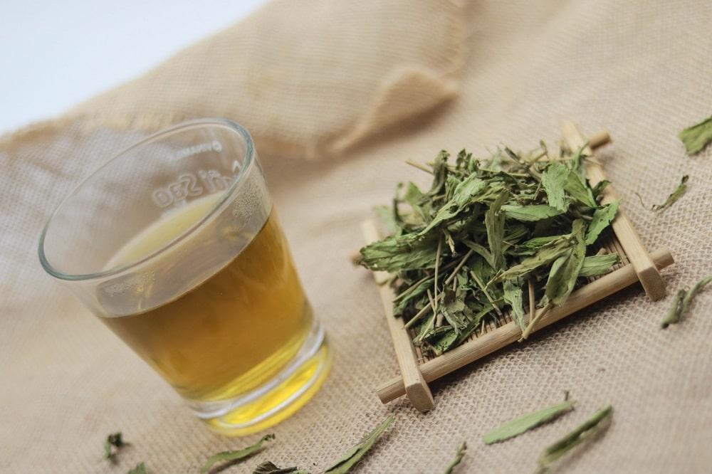 100g Cỏ ngọt khô, cỏ ngọt stevia 1