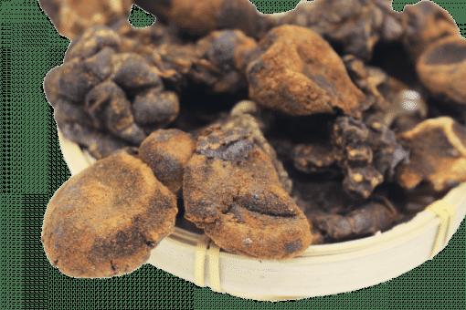 Nấm ngọc cẩu 1kg 3