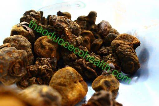 Nấm ngọc cẩu 1kg 6
