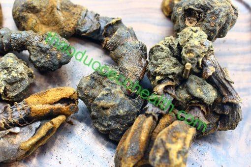 Nấm ngọc cẩu 1kg 8