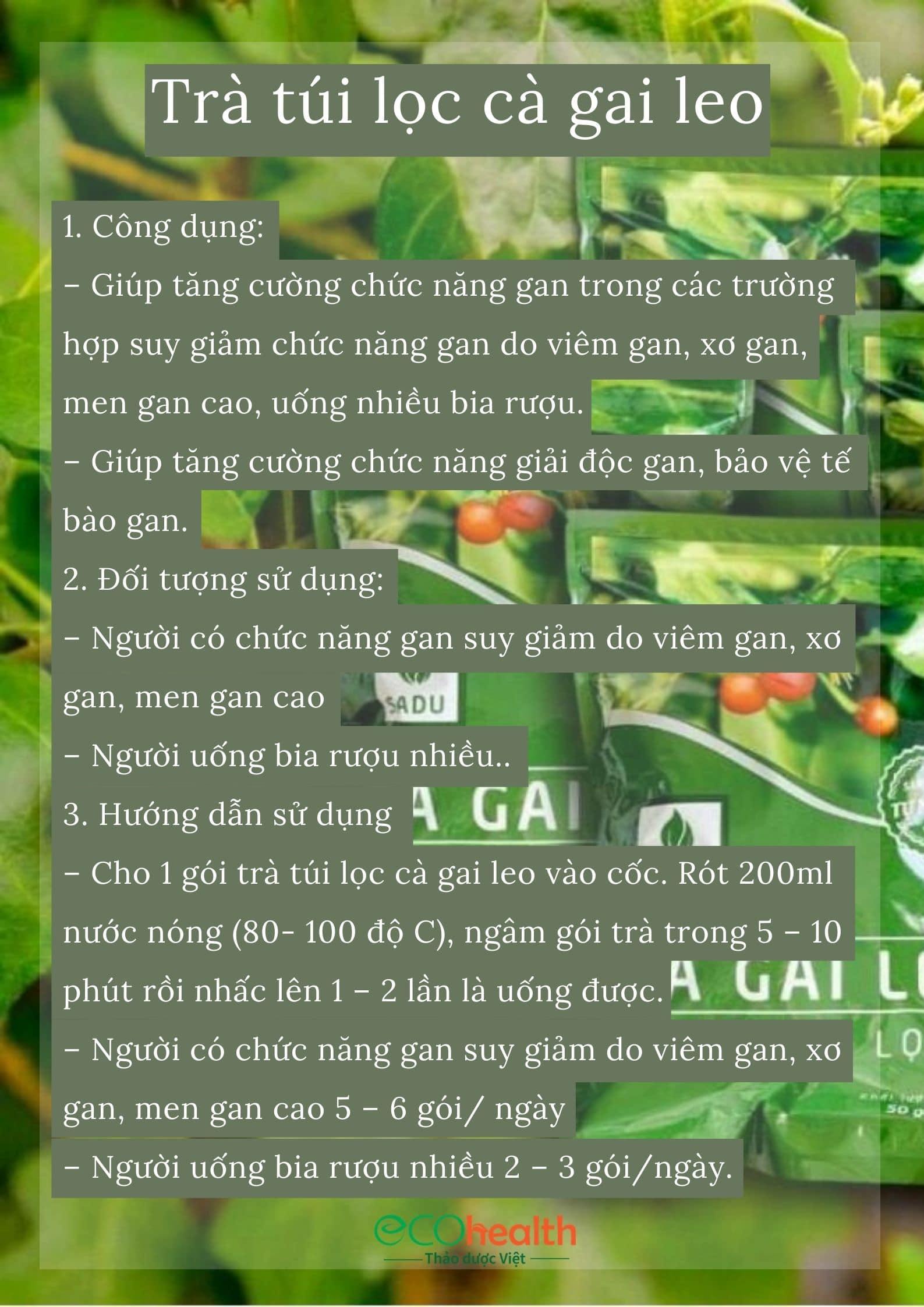 1 bịch trà túi lọc cà gai leo Sadu 250g 3