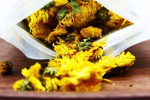 Trà hoa cúc vàng gói 100g 1