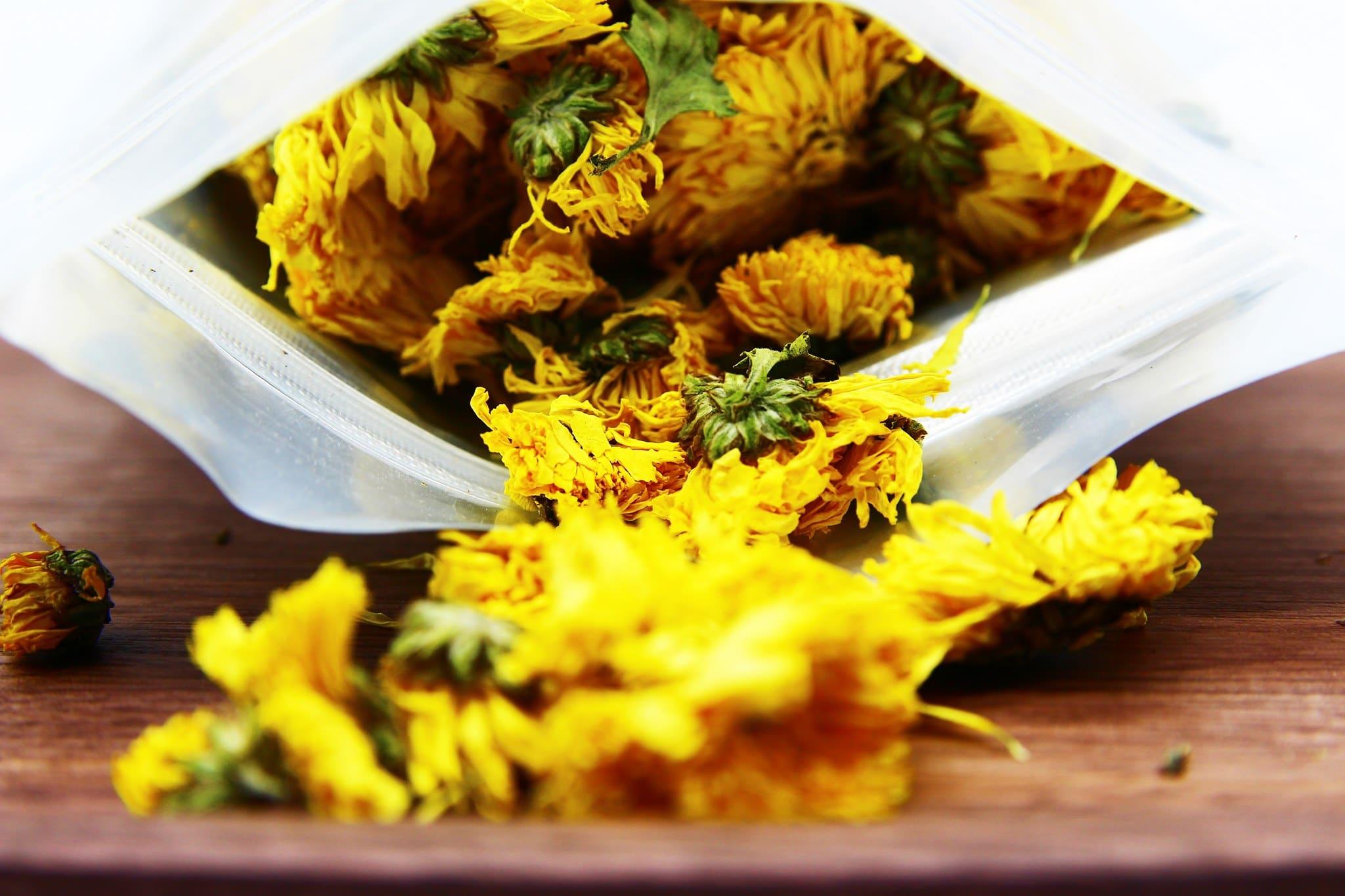 Trà hoa cúc vàng gói 100g 2