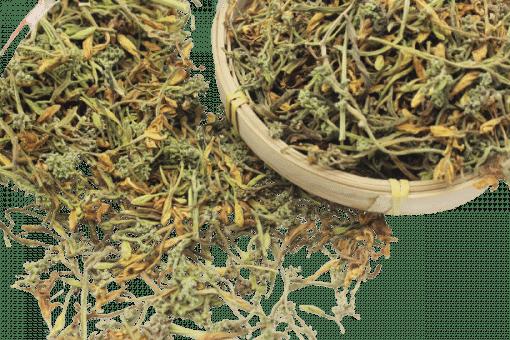Hoa đu đủ đực phơi khô tự nhiên 6