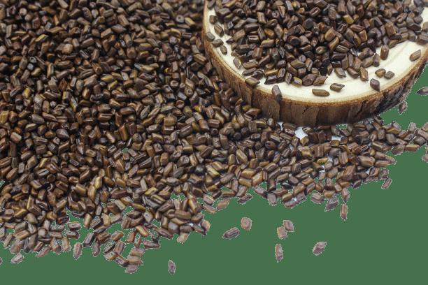 Hạt muồng (thảo quyết minh) sao khô 13