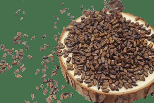 Hạt muồng (thảo quyết minh) sao khô 20
