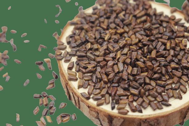 Hạt muồng (thảo quyết minh) sao khô 15