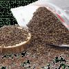 Hạt muồng (thảo quyết minh) sao khô 1