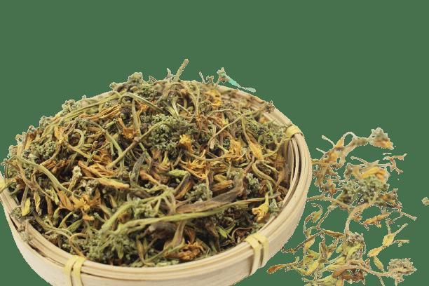 Hoa đu đủ đực phơi khô tự nhiên 22