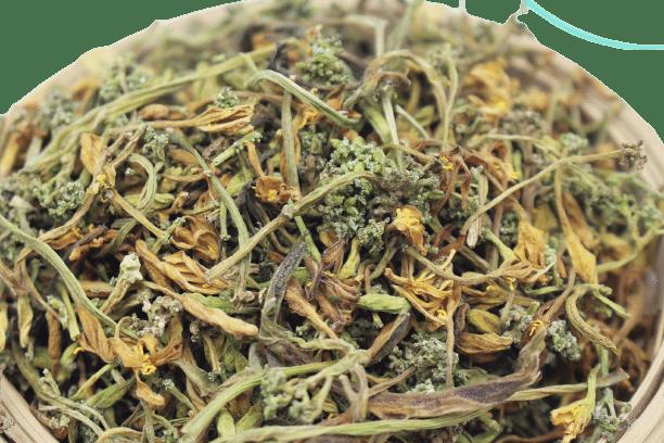 Hoa đu đủ đực phơi khô tự nhiên 18