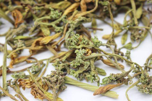 Hoa đu đủ đực phơi khô tự nhiên 13