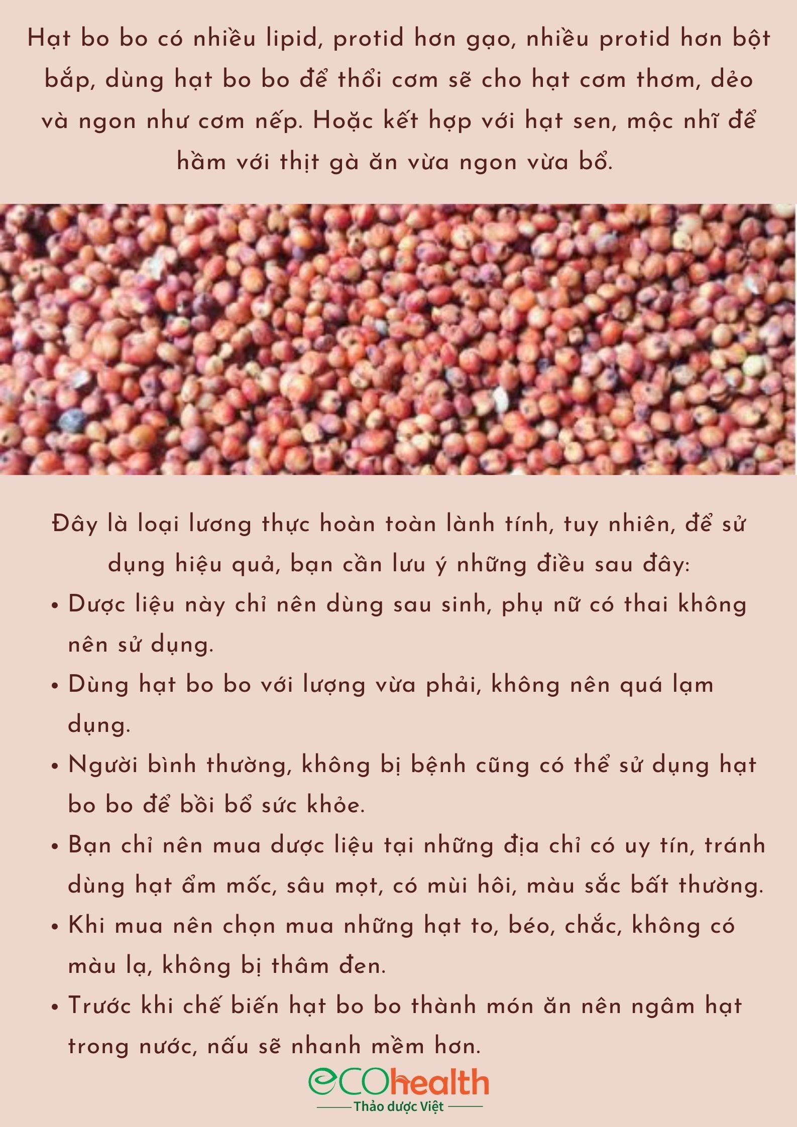 500g hạt bo bo đỏ Ấn Độ 14