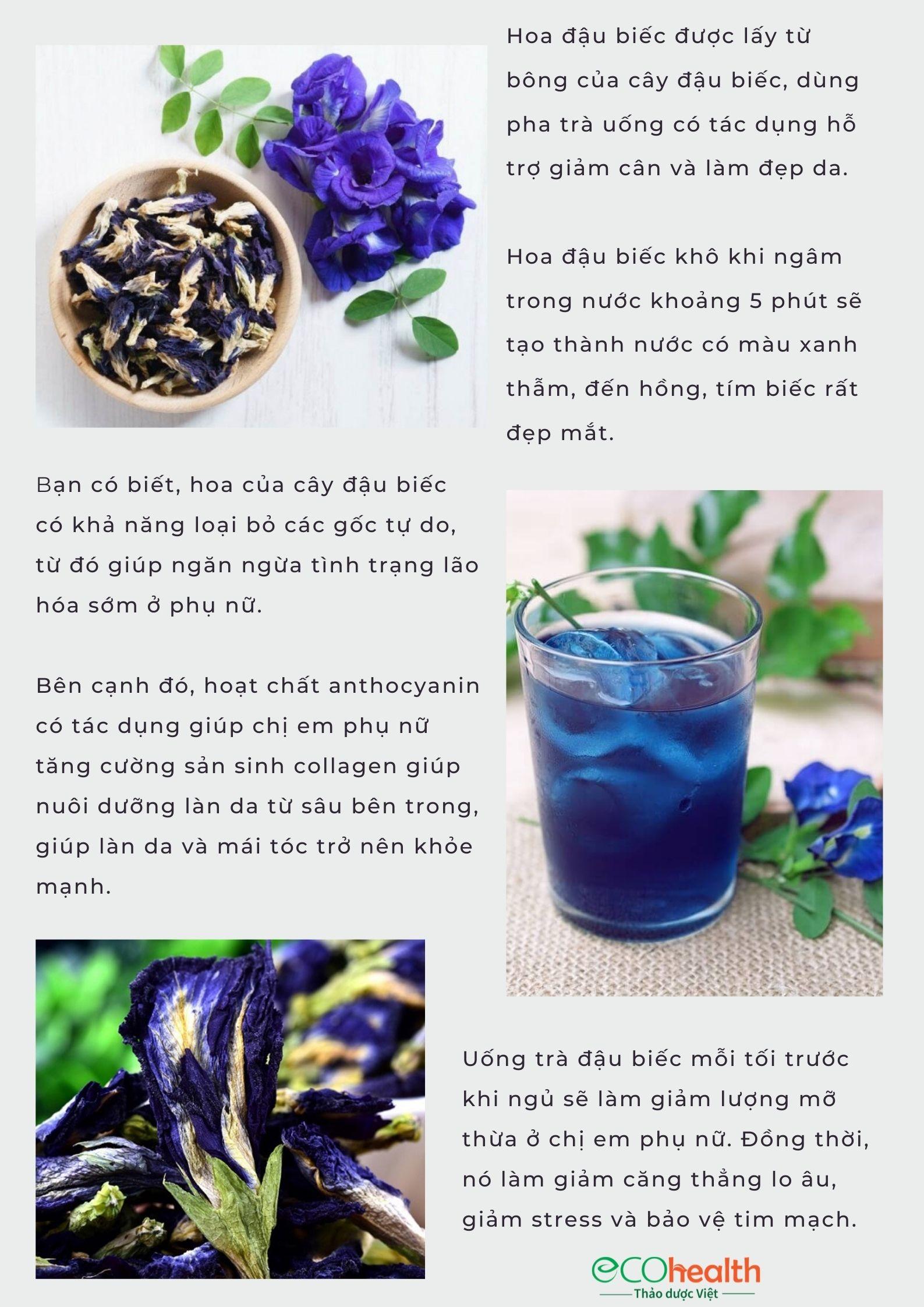 Hoa đậu biếc phơi khô tự nhiên 18