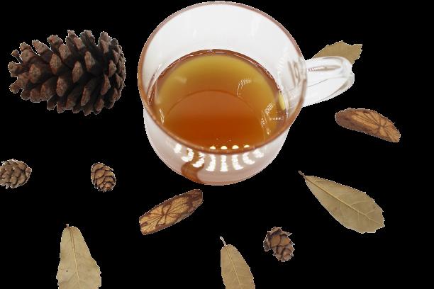 1 lít Mật ong hoa cà phê nguyên chất 13